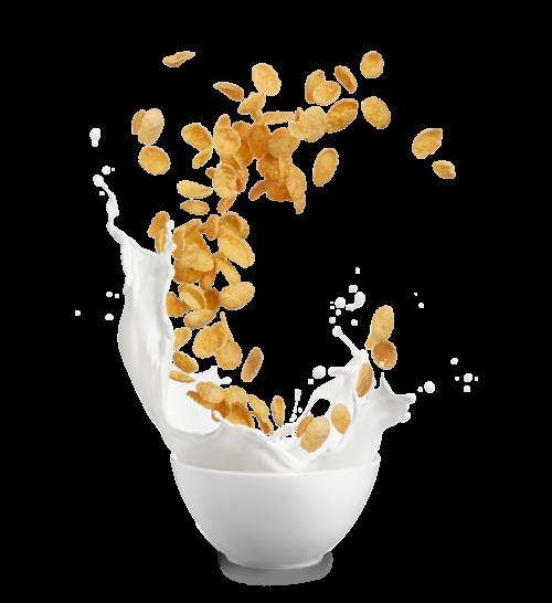 food21_Cereals_Copy